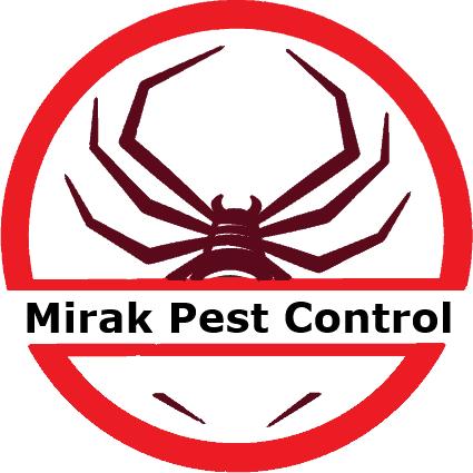 Pest Control – Affordable Pest control Mississauga